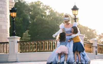 Walt Disney World Updates